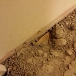 Hallway Room Floor 1