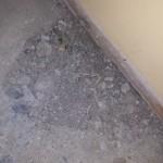 Living Room Floor 1