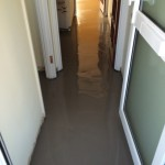 New Screed (2)