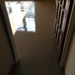New Screed (3)
